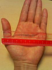 10センチ