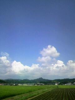 暑かぁ〜(>_<)