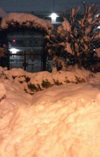 大雪のせいで