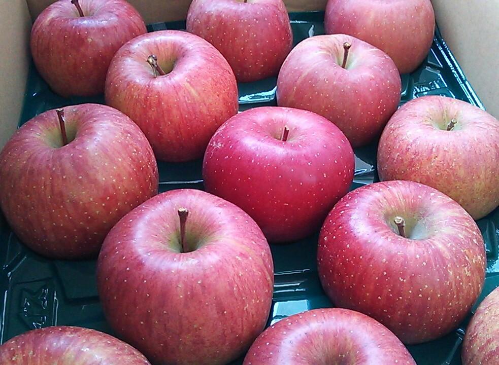 冨岡さんちのりんご